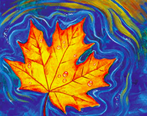Floating Maple Leaf